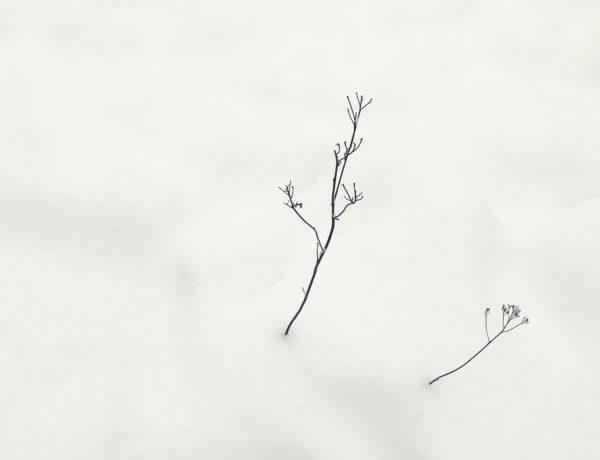 digitaalinen minimalismi